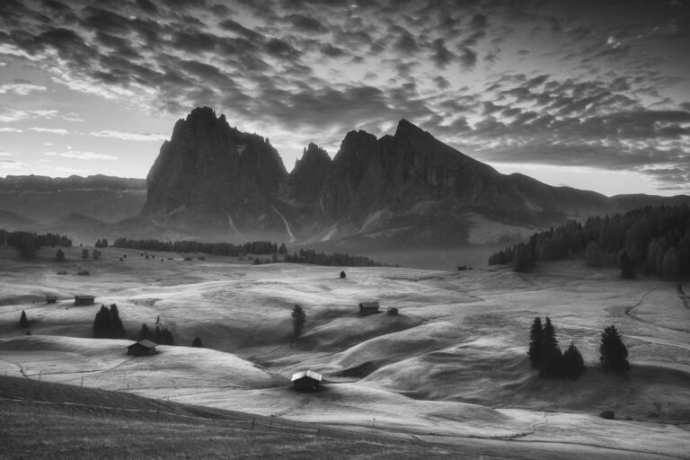 Alpe di Siusi 21