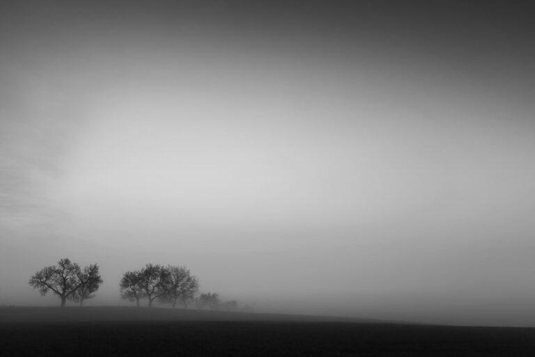 Morawski minimalizm 24