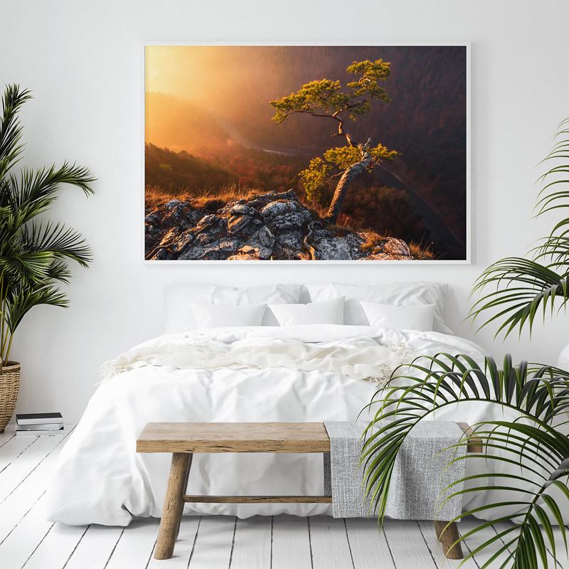 pieninski park narodowy, drzewo na sokolicy, marcin kesek fotograf krajobrazu, wydruki na papierze