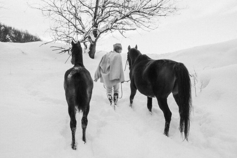 konie i goral 11